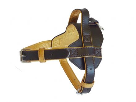 Fusion Brown Harness -Medium